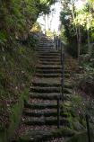 成田山公園の紅葉㉞
