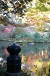 成田山公園の紅葉㉙