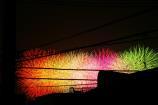 江戸川の花火②
