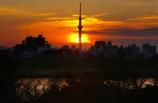 スカイツリーに落ちる夕日④