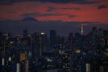 なんとも言えない雰囲気の富士山と東京タワー
