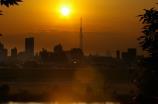 スカイツリーと夕日