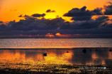 本部の夕陽