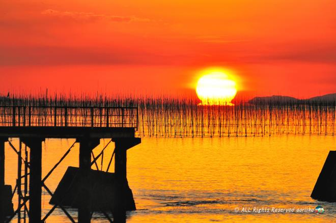 Sunset of seaweed farms