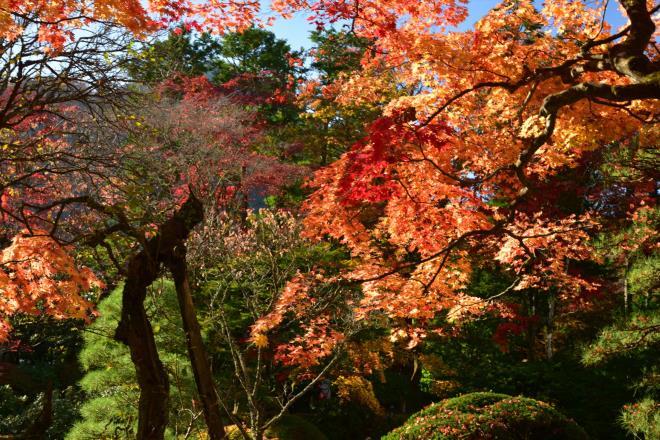 日光山輪王寺の庭園「逍遥園」