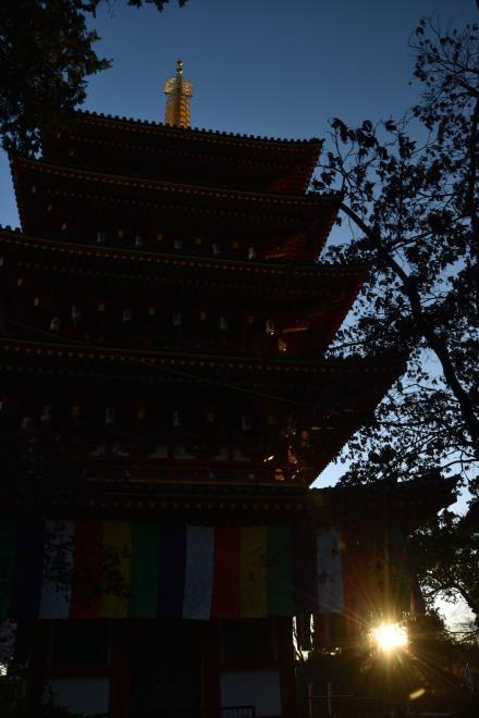 五重塔にも日の出が
