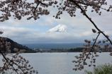ようやく富士山が