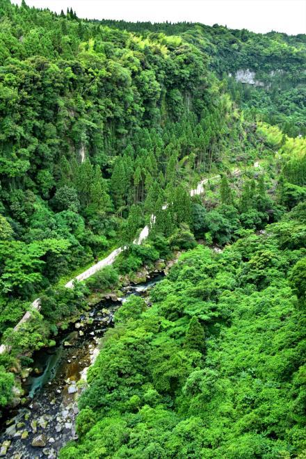俯瞰した滝への遊歩道_4993