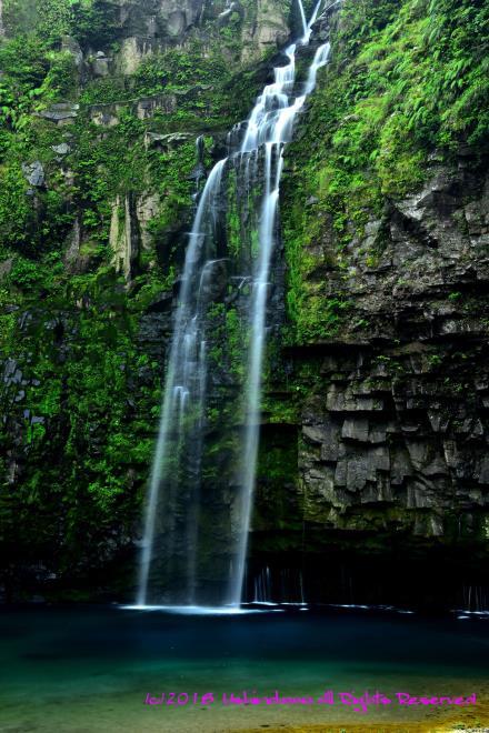 メインの滝_5045