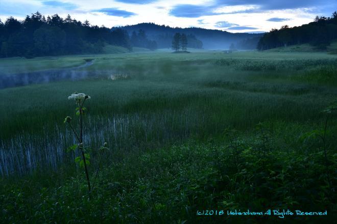 湿原の朝 @☆SIS_8274R.jpg