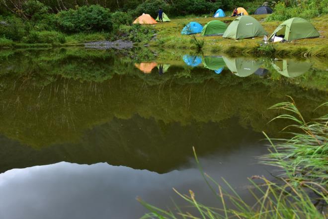 お池の光景