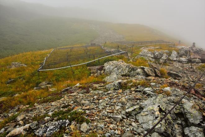 標高3000mの植生保護網