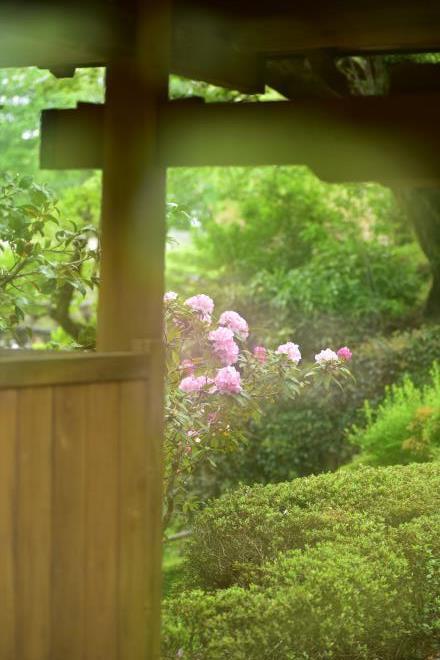 木戸からの眺め