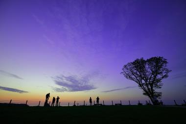 谷浜公園 IMG_4293_01.JPG