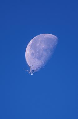 01月と飛行機.jpg