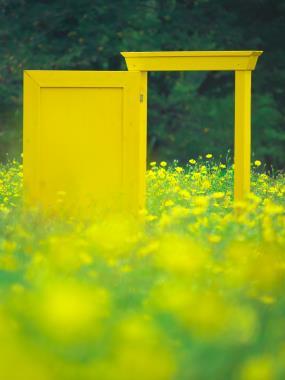 黄色の扉 P1168149.jpg