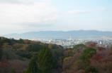 清水からの京都市内